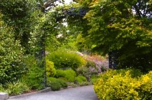 Rotary Garden