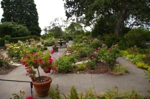 Sunken Rose Garden