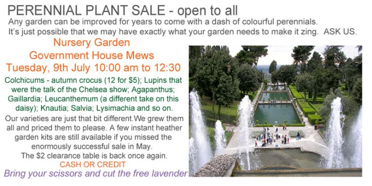 July Perennial Sale