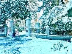 2017-winter-photo-1
