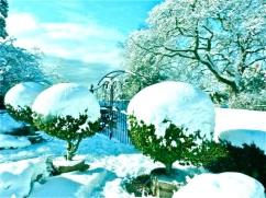 2017-winter-photo-3
