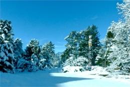 2017-winter-photo-5