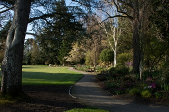 photo of the gardens