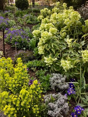 fghgs-english-country-garden-000012