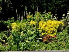 fghgs-english-country-garden-00005